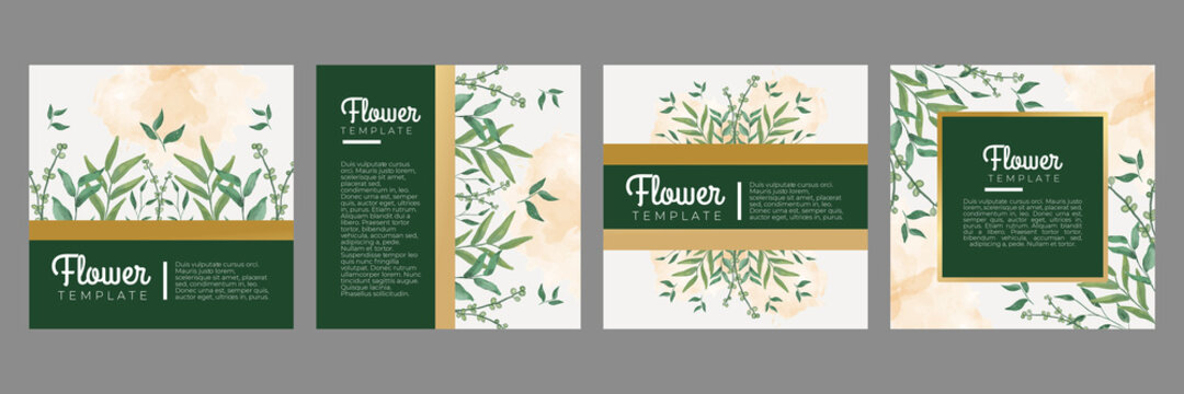 Luxury green gold floral flower leaves watercolor social media stories and post template vector set. Tropical and botanical warm earth tone square cover background collection.