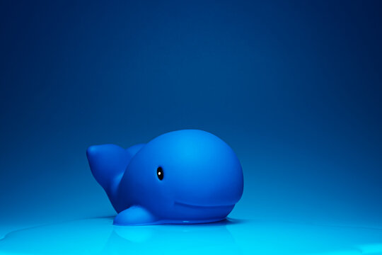 Creative composition of toy dolphin placed on blue surface for ocean concept in studio