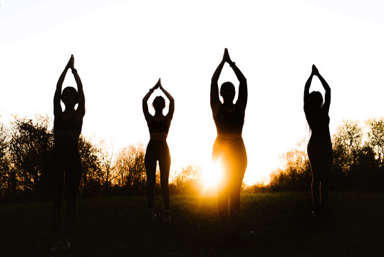 Company of fit females balancing in Tree pose and practicing yoga together on lawn in park at sunset