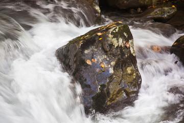 Cascades in the stream Wall mural