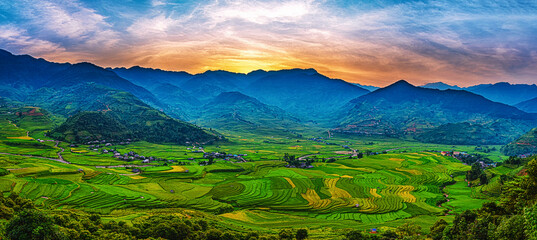 Rice fields on terraced beautiful shape of TU LE Valley, view on the road between Nghia Lo and Mu Cang Chai, Yen Bai province, Vietnam.