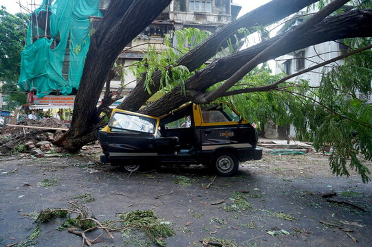 Damage from heavy winds due to Cyclone Tauktae in Mumbai