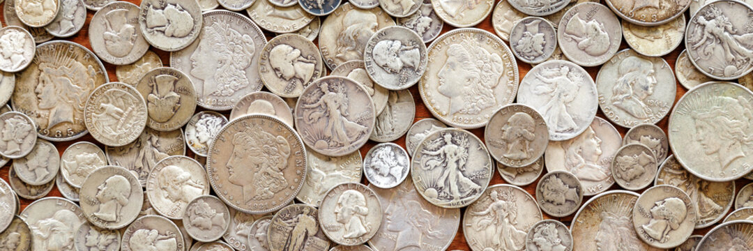 Silver Coins Panorama