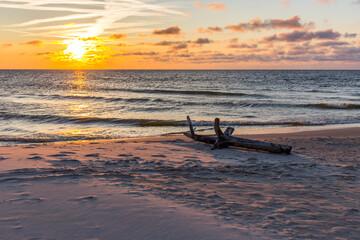 Fototapeta Morze bałtyckie Plaża Sundown Sea Korzeń Pień obraz
