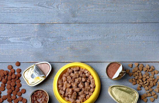 Wet and dry pet food on blue wooden table, flat lay. Space for text