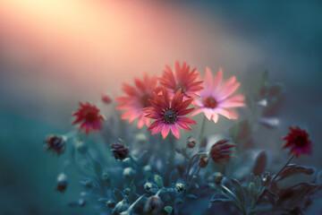 Obraz czerwone kwiaty w porannym słońcu - fototapety do salonu