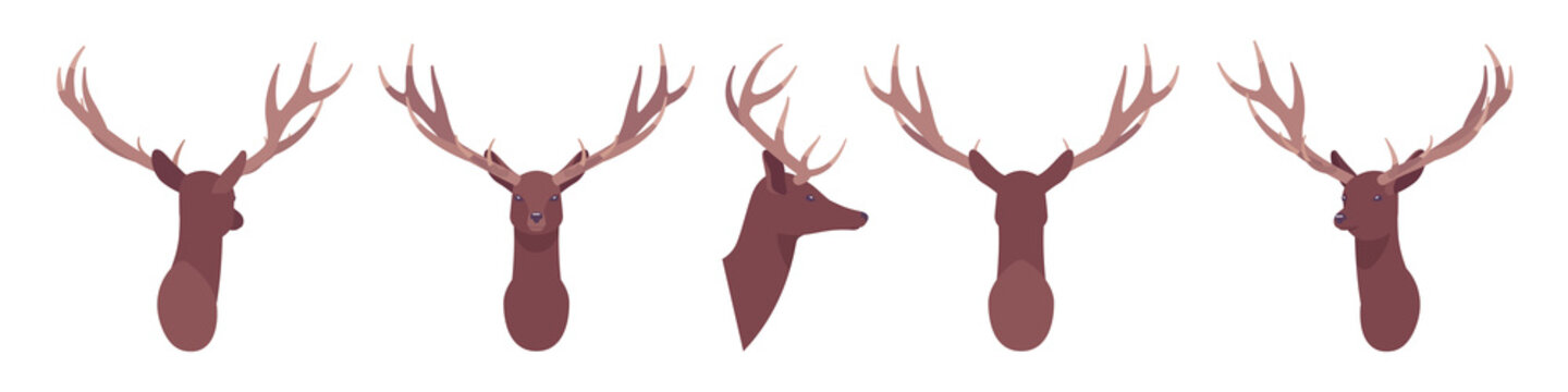 Animal mask male deer head, faux taxidermy gallery wall mount decor. Hunting trophy, zoo museum hanging, avatar. Vector flat style cartoon illustration isolated on white background, different views