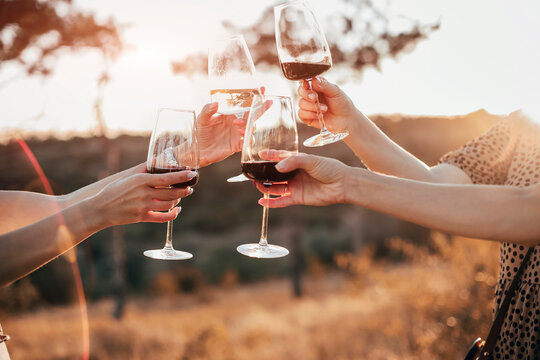 Friends clinking glasses with wine during picnic