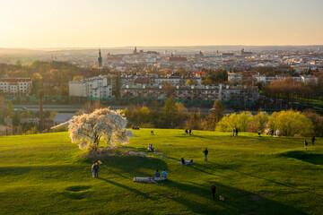 Fototapeta Sunset over Krakow during Spring, view from Krakus Mound obraz