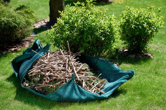 The clipped branches are garden debris in the garden.