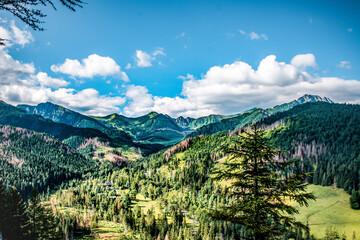 Tatrzański park narodowy letnią porą krajobraz letni.letnia