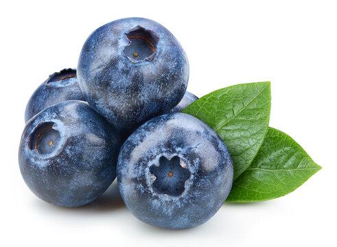 Organic blueberry isolated on white background