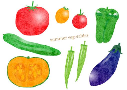 夏野菜のイラストセット(トマト,ミニトマト,ピーマン,オクラ,きゅうり,カボチャ,ナス)