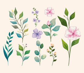 flowers with leaves icon group
