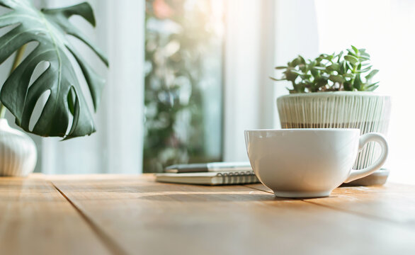 Closeup white cup of coffee with small trees and green leaf in vase on wooden table near bright window