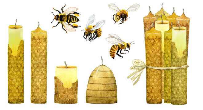 Honey bee, bee wax, wax candles set painted with watercolor.  Beekeeping wax candles elements isolated on white. Local healthy organic food, farmhouse decor, card, postcard, stickers