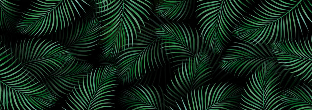 Luxury banner background. Exotic tropical palm leaves. hawaiian plants pattern. Spring or summer nature. Plant branches on a dark background. Promotional template. Design Element.
