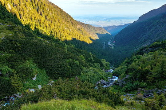 alpine balea stream in mountains. water flows among the stones and trees. beautiful summer landscape in the morning. view in to the distant valley of fagaras ridge