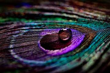 Obraz #colours - fototapety do salonu