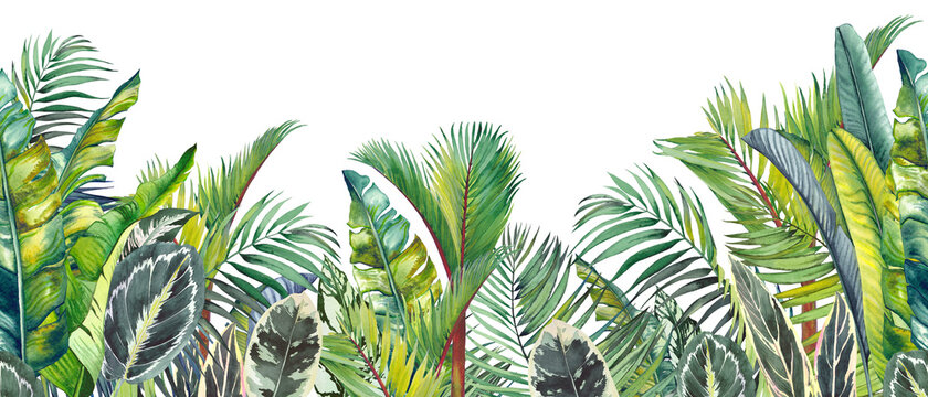 Endless watercolor border with green tropical palm leaves. Hand drawn illustration on white.