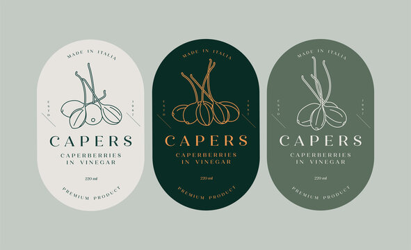 Vector set labels with pickled capers - simple linear style. Emblems composition with caperberries and typography.