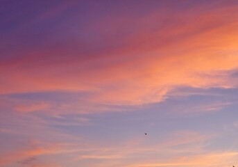 Obraz sunset in the sky - fototapety do salonu