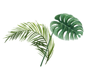 Green tropical leaf bouquet. Palm twigs, monstera branches. Moody jungle florals. Watercolor free-hand illustration for postcard, invitation, banner, event flyer, poster, presentation, menu, lifestyle