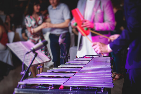 Xylophone concert view of vibraphone marimba player, mallets drum sticks, with a latin orchestra musical band performing in the background