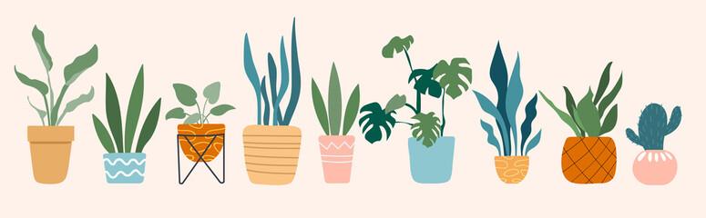 Urban jungle, trendy home decor with plants