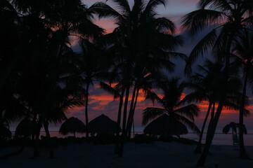 Fototapeta wschód słońca na karaibskiej plaży na Dominikanie w tle z palmami i z chmurami obraz