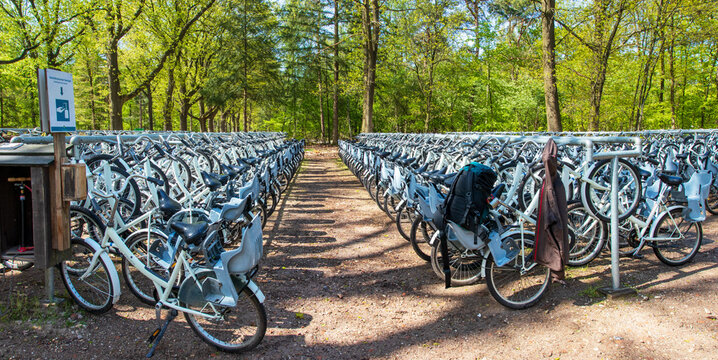Parking with a large amount of white bicycles, freely available for park visitors at Hoge Veluwe National Park, Netherlands