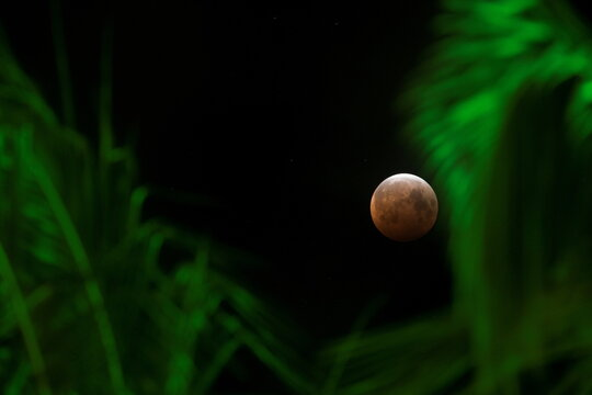 A supermoon coincides with a total lunar eclipse over the skies of Honolulu