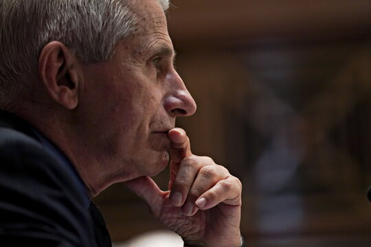 NIH Leadership Testify Before Senate Appropriations Subcommittee