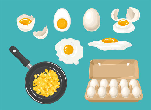 Set of white chicken eggs. Whole eggs in carton box, broken egg, yolk, boiled, fried egg, cracked shell and scrambled eggs in frying pan. Vector food illustration in cartoon flat style.