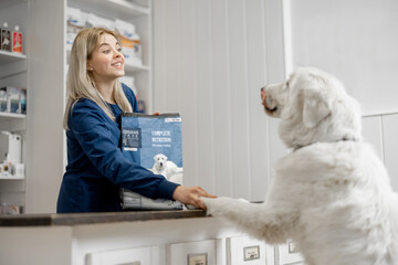 Fototapeta Dog climbed paws on the table at reception in veterinary clinic while doctor greets for a paw with a dog. Choosing dry food for the pet. . Pet care and treatment obraz