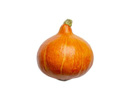 Isolated orange pumpkin, hokaido transparent object on white background, png