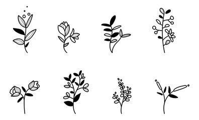 minimalistic floral vector collection