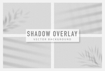 Shadow overlay effect. Transparent shadow of window. Vector illustration.