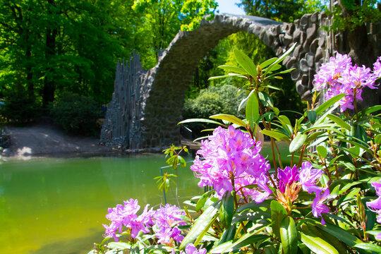 Rakotzbrück mit Rhododendron im Vordergrund im Crosseffekt