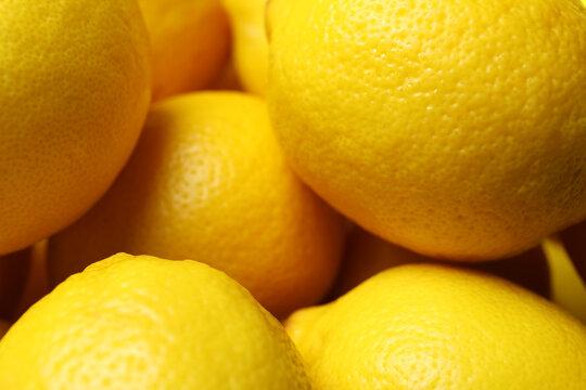 Ripe lemons on whole background, close up