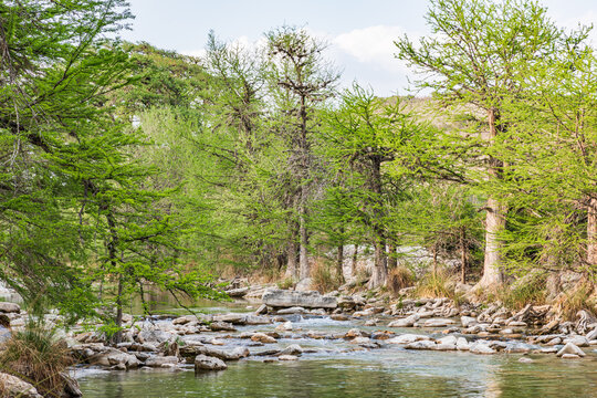 The Frio River in the Texas hill country.