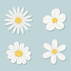 Obraz set of flowers with white leaves - fototapety do salonu