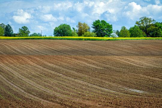 Farmland after spring rain.