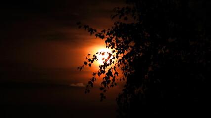wschód księżyca czerwony księżyc