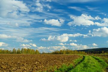 Wiosenny krajobraz natura - fototapety na wymiar