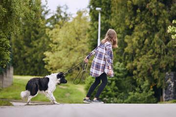 Obraz Teenager girl pulling his stubborn dog on pet leash during walk in city. - fototapety do salonu