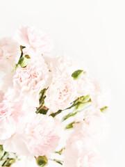 Obraz Tło kwiaty - fototapety do salonu