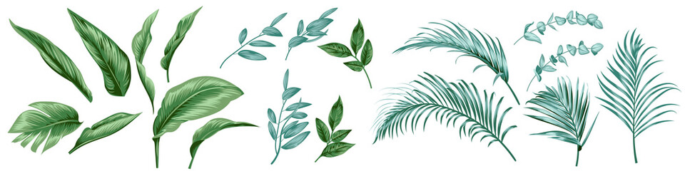 Set of tropical leaves for textile design