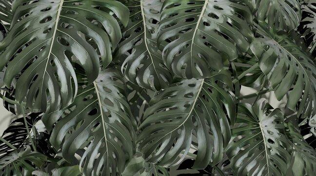Fresh Green Background. Green Wet Monstera Deliciosa Leaves. Monstera in Bright Tones. Wallpaper. 3d rendering