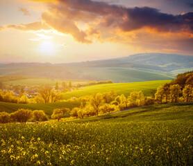 Fantastic rural landscape at dawn. Beautiful sunlight on the wavy fields.